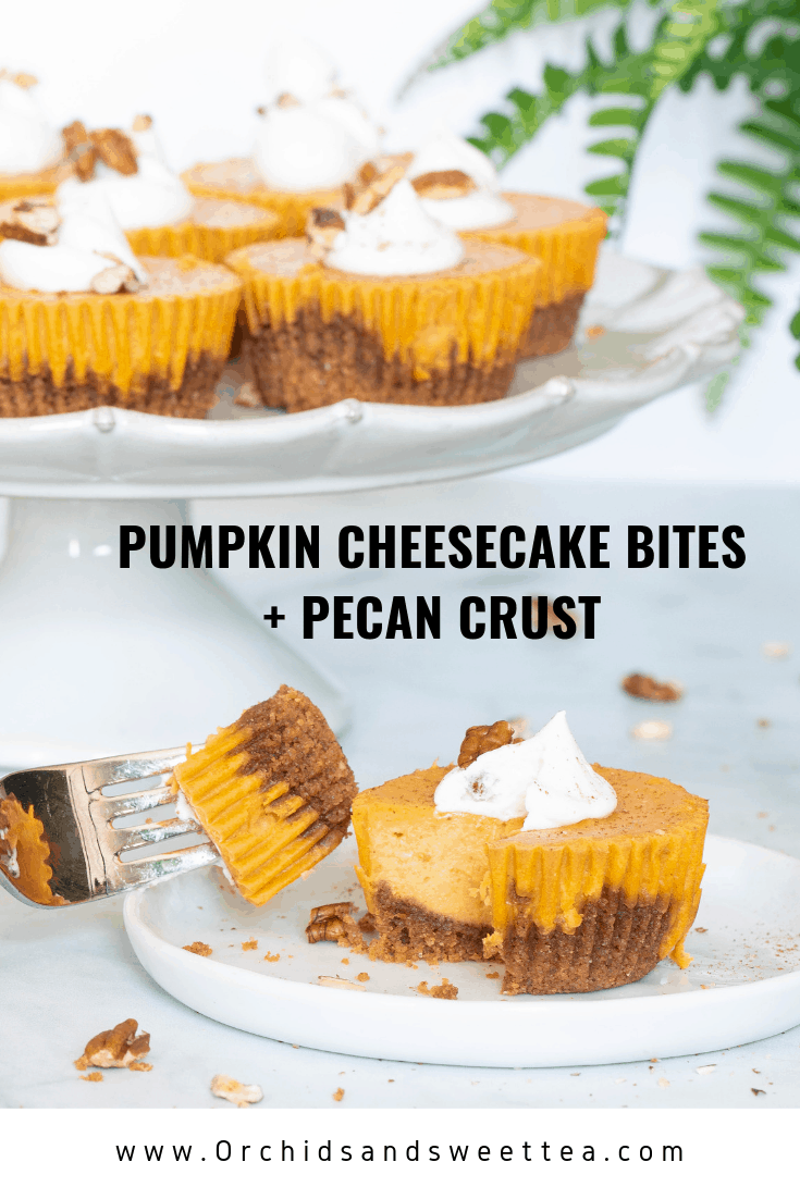 Pumpkin Cheesecake Bites + Pecan Crust