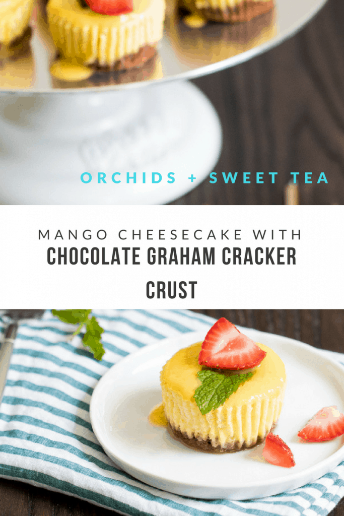 Mango Cheesecake with Chocolate Graham Cracker Crust