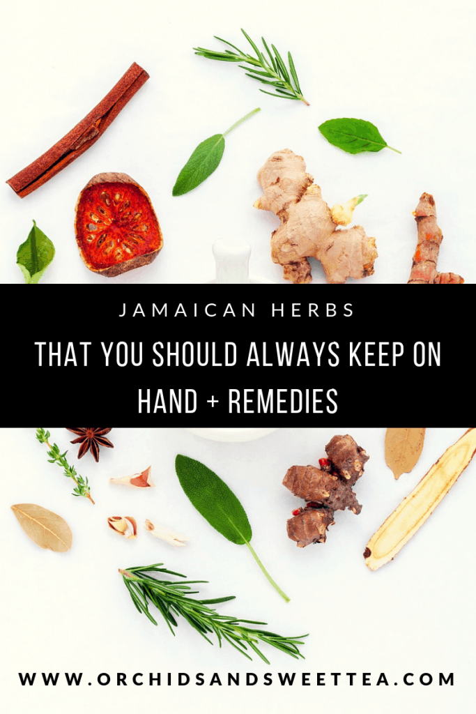 Jamaican Herbs That You Should Always Keep On Hand + Remedies