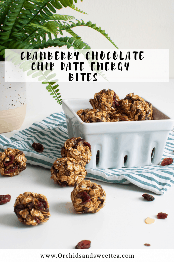 Cranberry Chocolate Chip Date Energy Bites