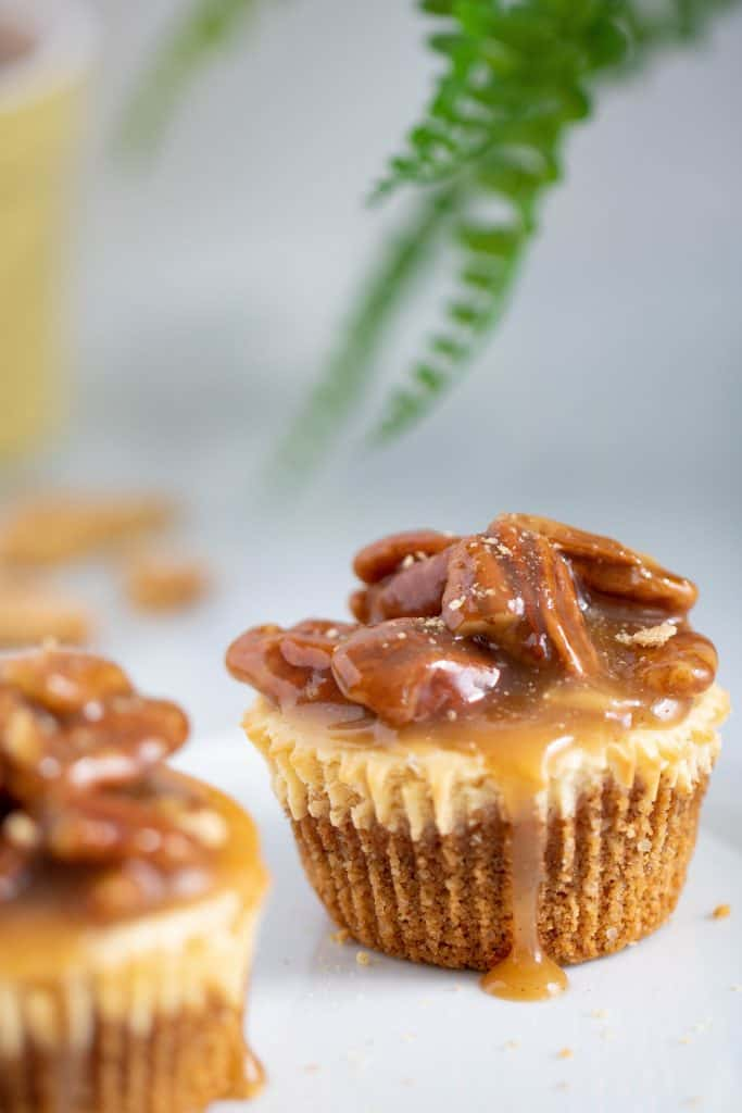 Delicious Pecan Pie Cheesecake Bites