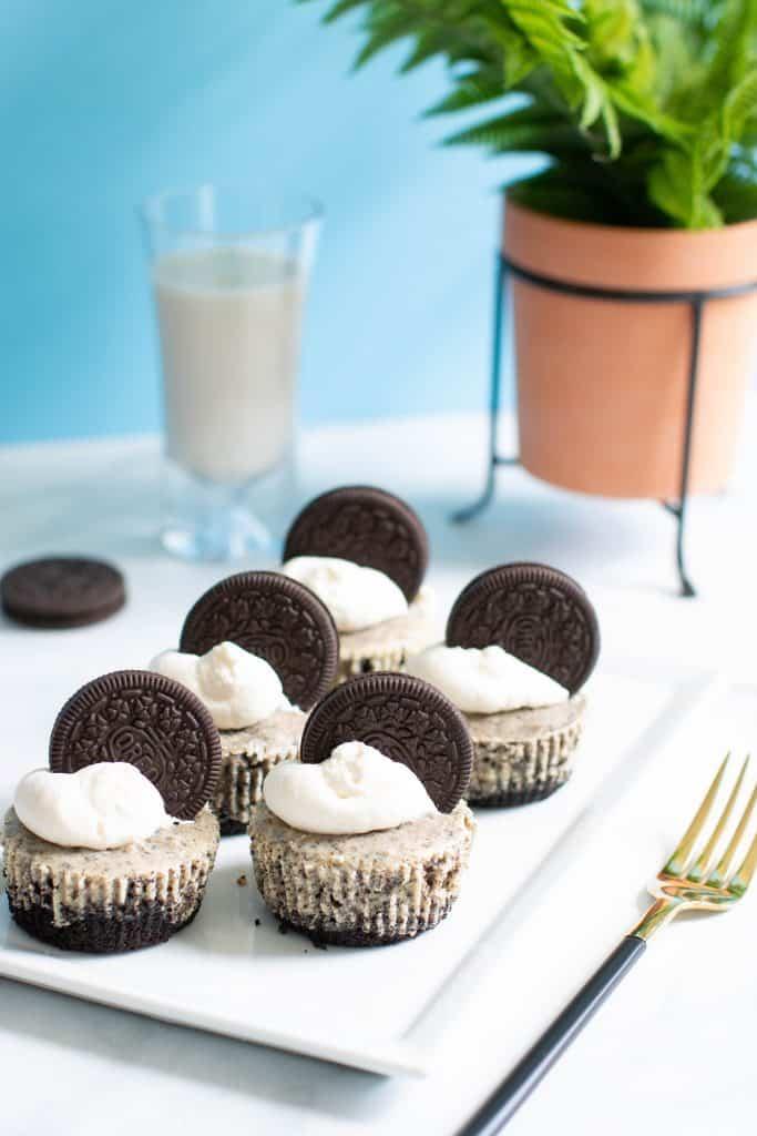 The Best Oreo Cheesecake Bites