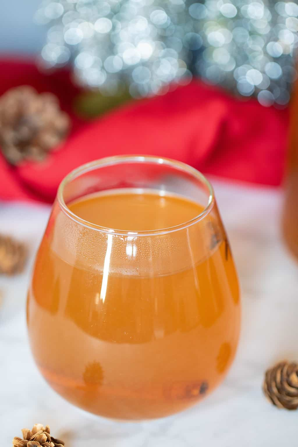 Homemade Slow Cooker Apple Cider