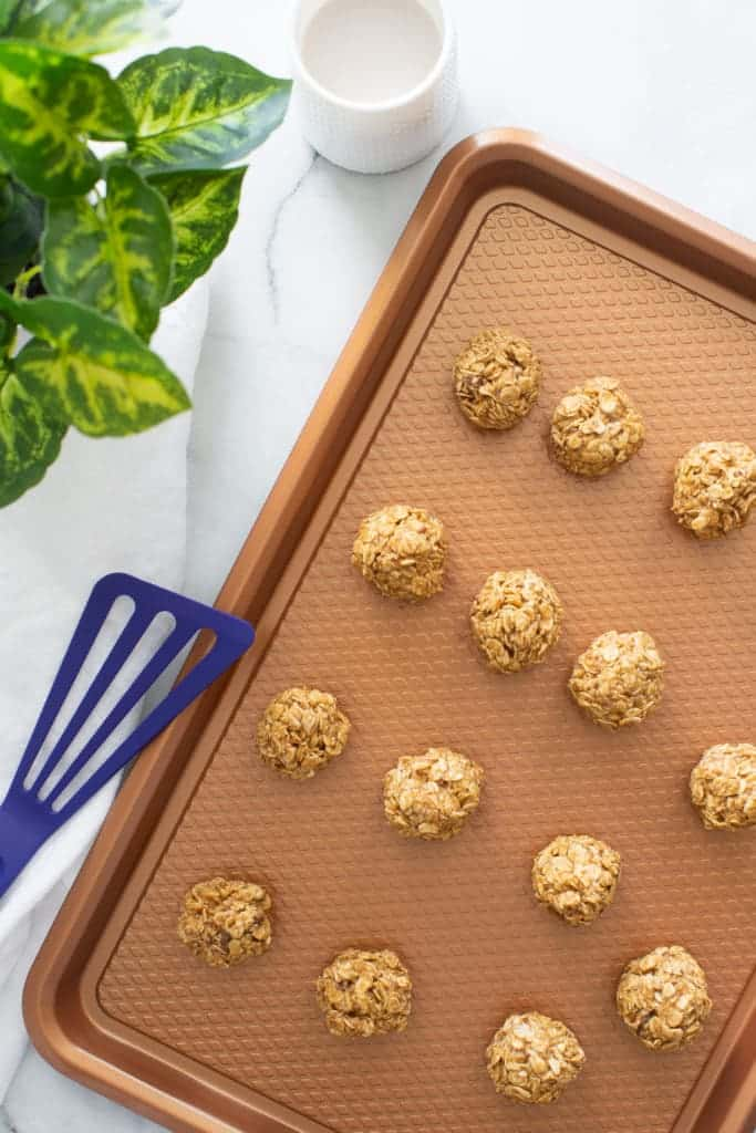 Easy Healthy Peanut Butter No-Bake Energy Bites